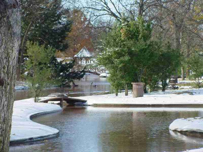 Wichita Falls Tx Official Website Lucy Park